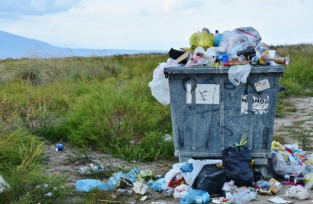 odpadky a odpadní kontejner.jpg