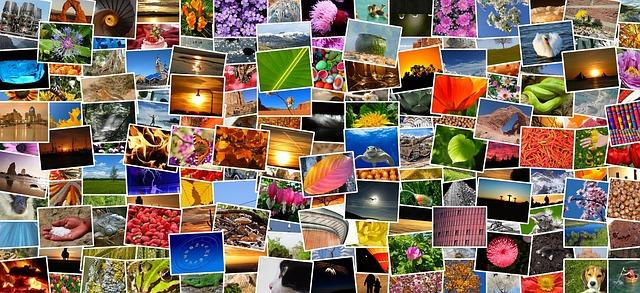 Sbírka fotografií